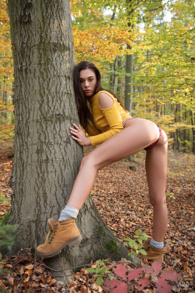 Porn bruenette Brunette Porn